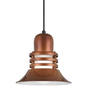 rustic pendant lighting fixture
